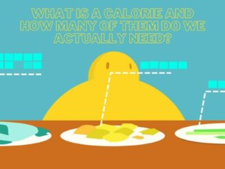 What Is A Calorie And How Many of Them Do We Actually Need