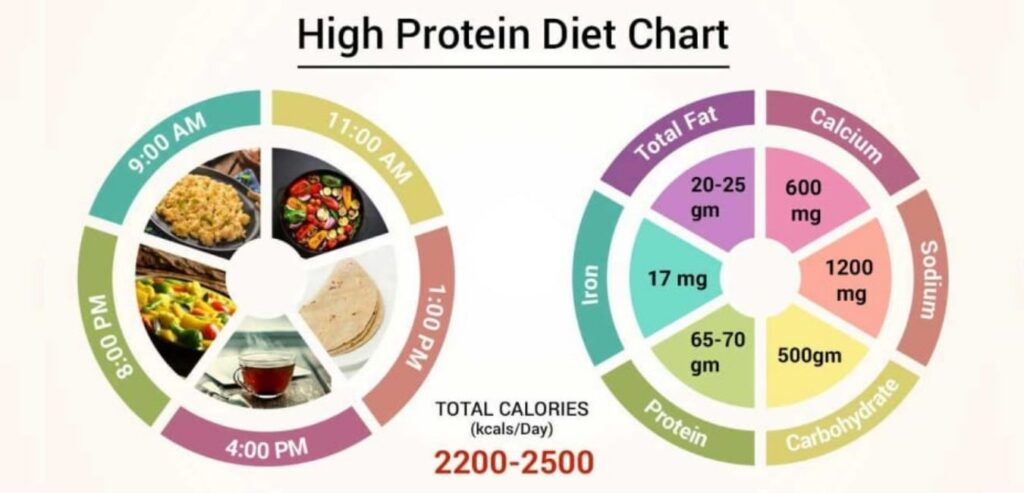High Protein Diets - Which Diets Actually Work