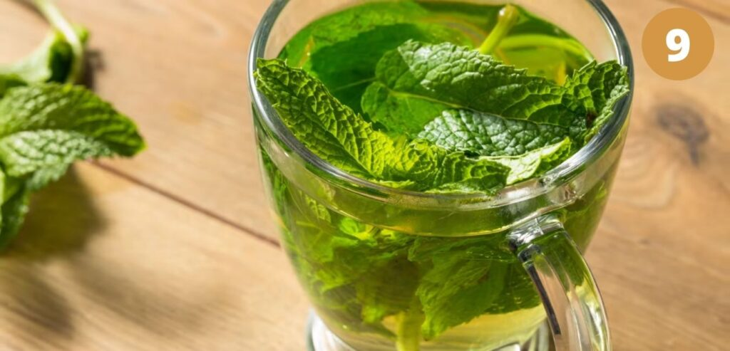 Peppermint Tea - How to Relieve Your Migraine